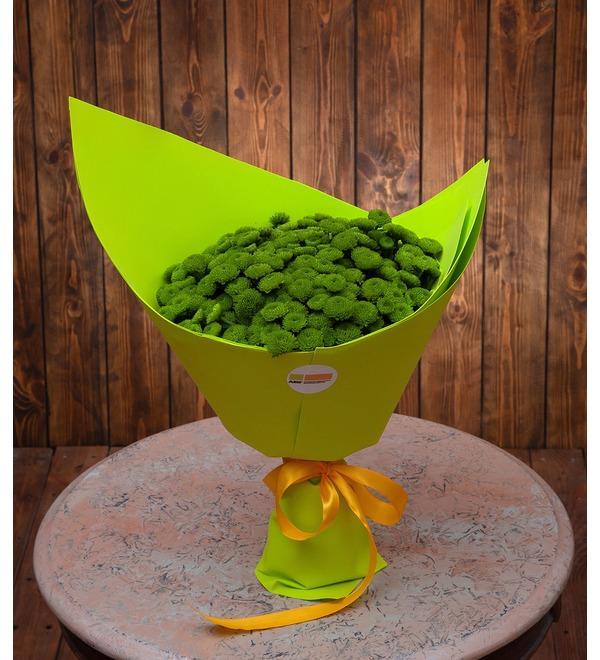 Букет-соло зелёных хризантем (15,25,35,51,75 или 101) – фото № 1