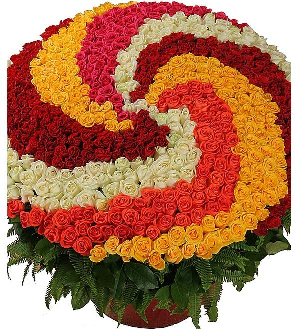 Композиция из 555 роз Магия любви – фото № 1