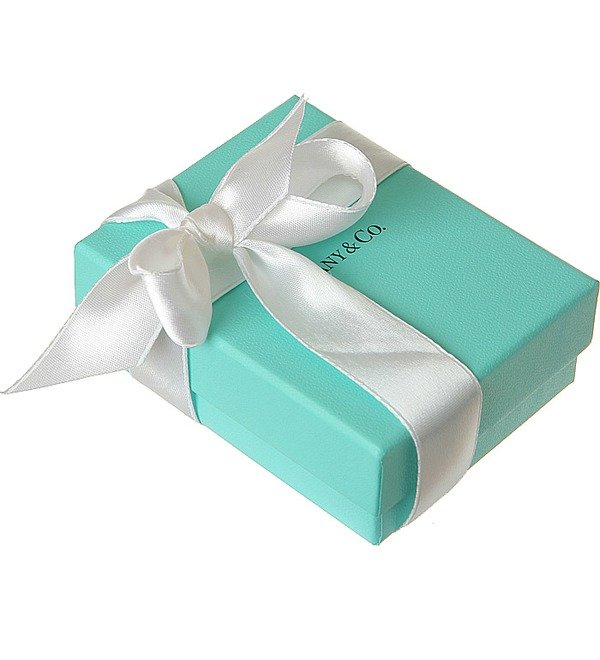 Запонки Tiffany Oval Cuff Links с эмалью – фото № 2