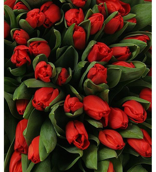 Композиция из красных тюльпанов (301 или 501) – фото № 5