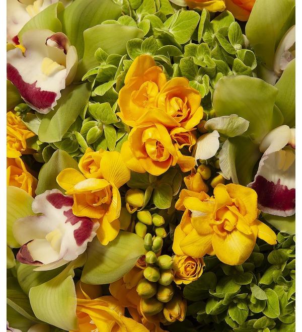 Bouquet-orchestra Teno – photo #2