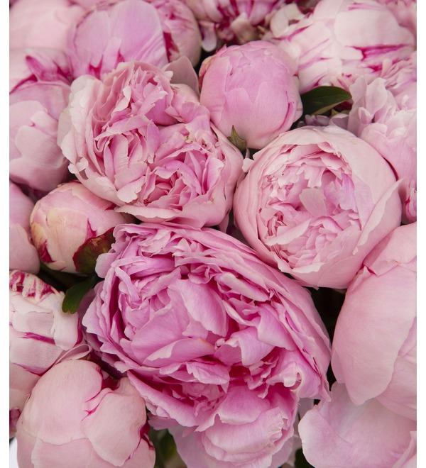 Букет-соло пионов Sarah Bernhardt (15,25,35,51,75 или 101) – фото № 3