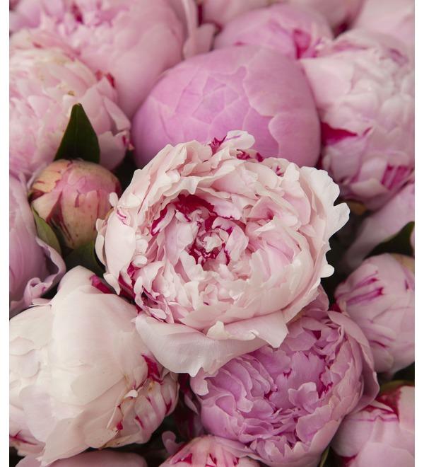 Букет-соло пионов Sarah Bernhardt (15,25,35,51,75 или 101) – фото № 2