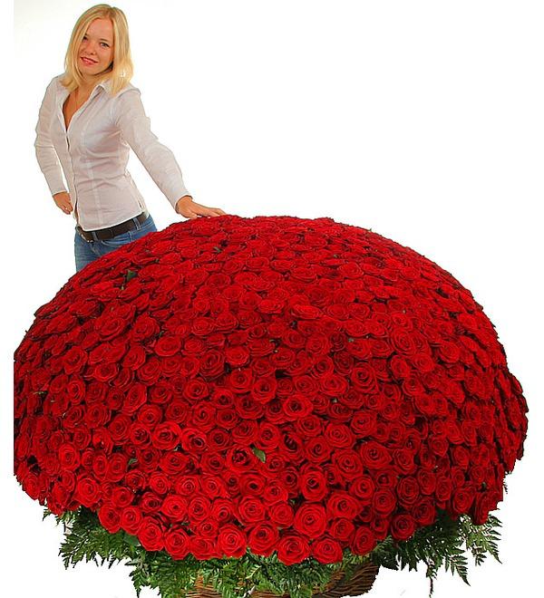 Композиция из 1001 розы Сенсация – фото № 2