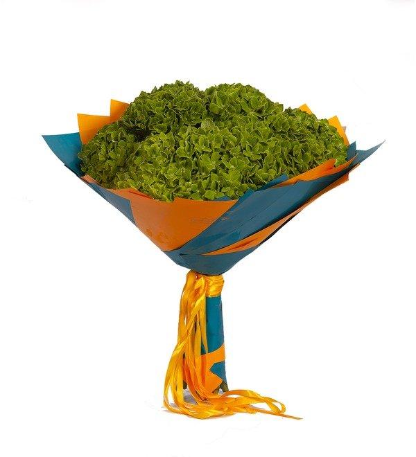 Букет-соло Зелёные гортензии (5,7,9 или 15) – фото № 4