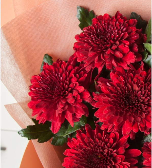 Bouquet of Chrysanthemums Kiss (5, 9 or 15) – photo #2