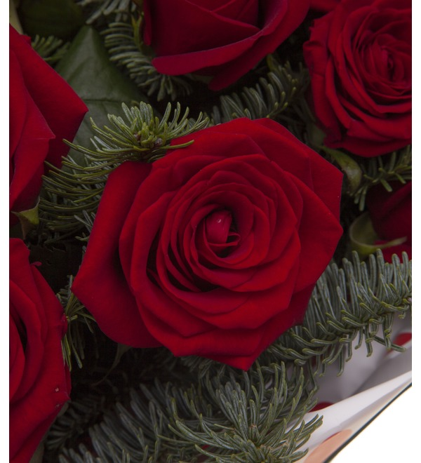 Bouquet-solo roses Grand Prix (15,25,35,51,75 or 101) – photo #3