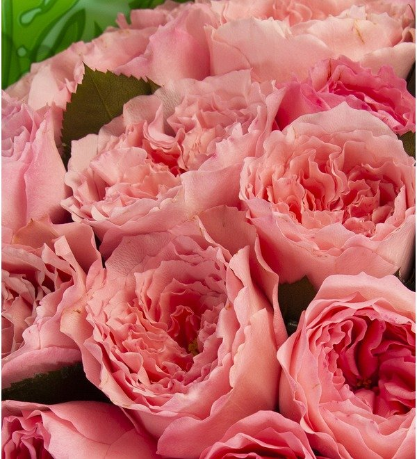 Bouquet-solo Mayras Rose (15,25,51 or 75) – photo #2