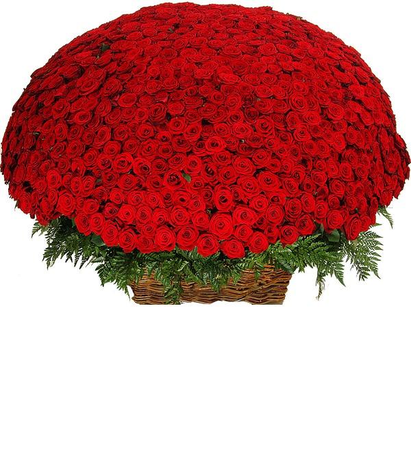 Композиция из 1001 розы Сенсация – фото № 3