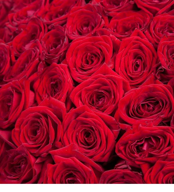 Букет из 201 красной розы Ты - мой мир! – фото № 3