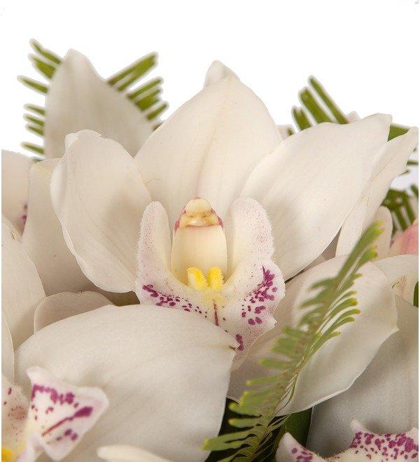 Букет-соло Белые орхидеи (15,25,35,51,75,101 или 151) – фото № 2