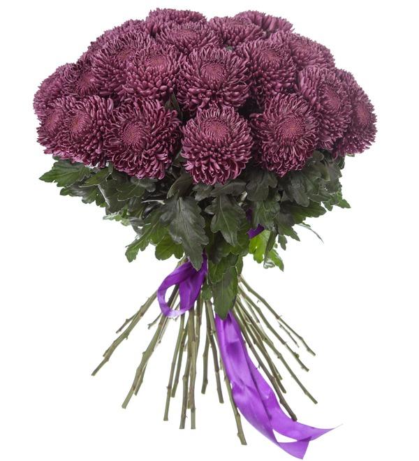 Букет-соло хризантем Bigoudi Purple (9,15,21,35 или 51) – фото № 4