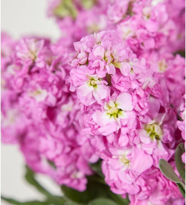 Букет розовой маттиолы (15, 25 или 51) – фото № 3