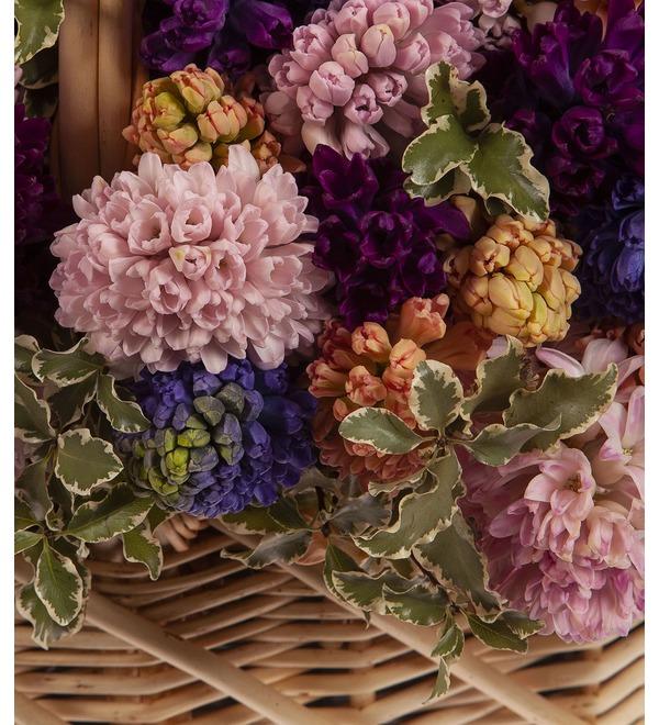 Композиция Разноцветные гиацинты (101,201 или 301) – фото № 3