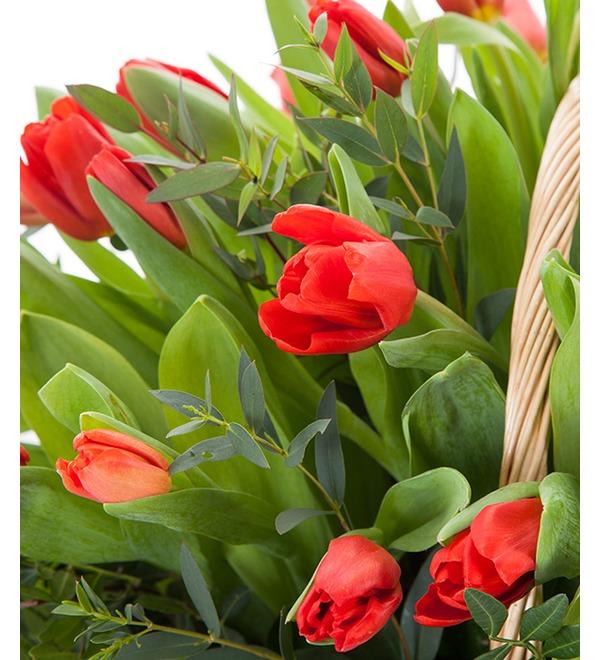 Композиция Красные тюльпаны – фото № 4