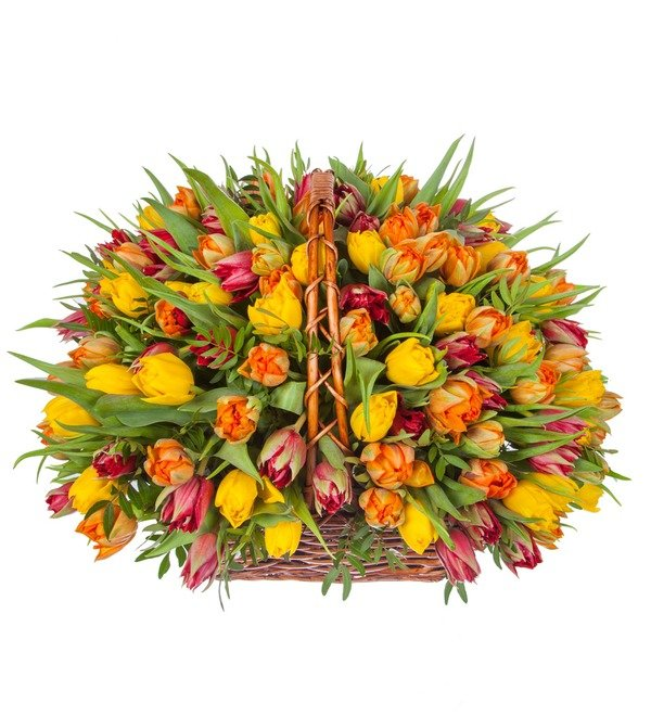 Композиция из пионовидных тюльпанов (151, 301 или 501шт.) – фото № 5