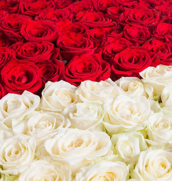 Composition My heart for you (1001 Roses) – photo #3