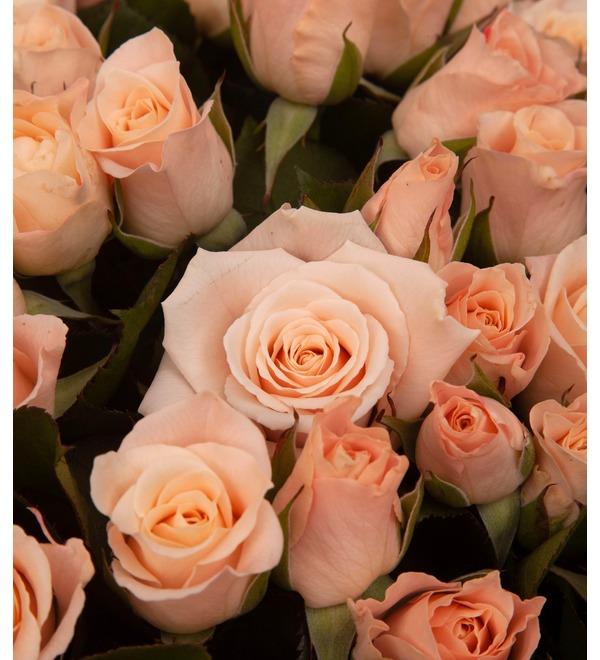 Букет-соло роз Medeo (15,25,35,51,75 или 101) – фото № 3