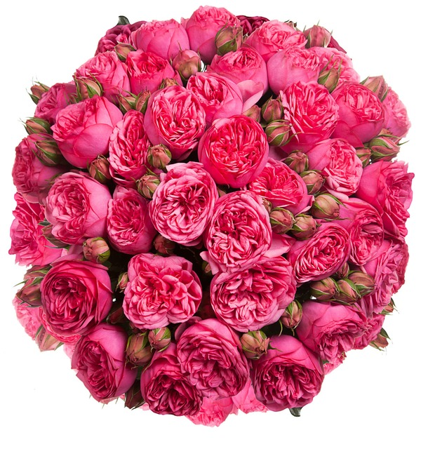 Bouquet of pion-shaped roses Pink Piano (15, 25 or 51) – photo #5