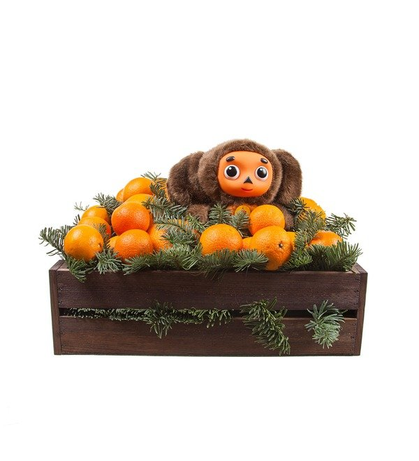 Подарочное кашпо Посылка с апельсинами – фото № 4