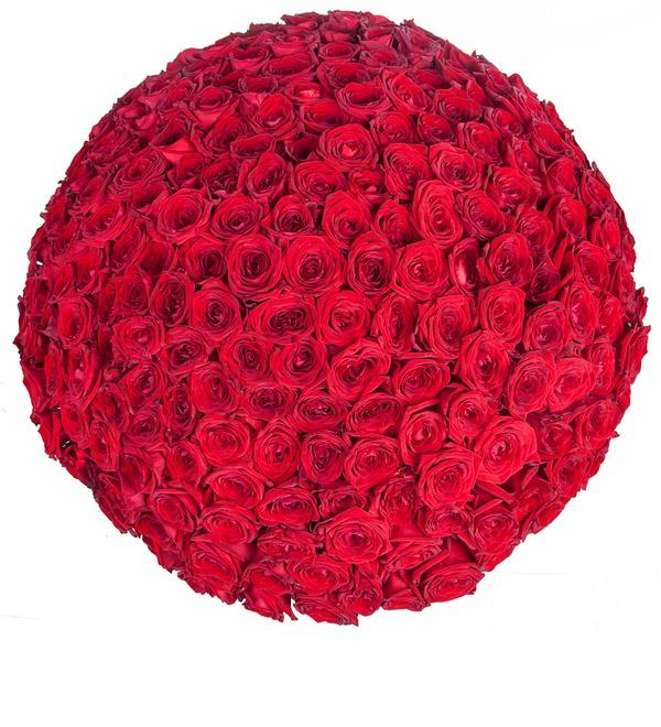 Букет из 201 красной розы Ты - мой мир! – фото № 5