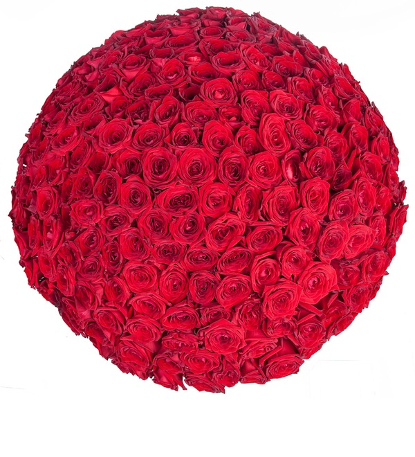 Bouquet of 201 red roses You are my world! – photo #5