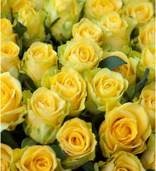 Composition of 501 or 1001 yellow roses Gold – photo #3