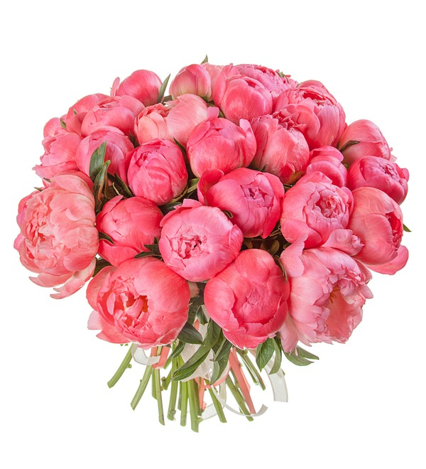 Bouquet-solo of peonies Coral Sunset (15, 29 or 51 peonies) – photo #5