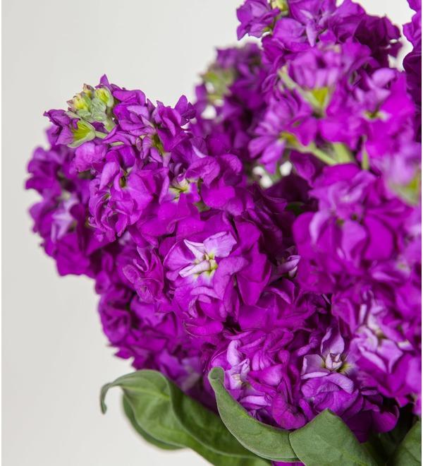 Букет фиолетовой маттиолы (15, 25 или 51) – фото № 3