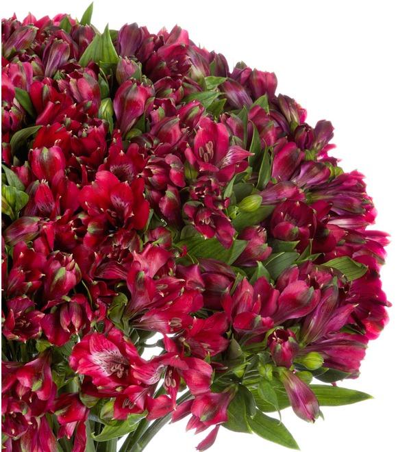 Bouquet Ruby (25, 51 or 101 alstroemeria) – photo #5