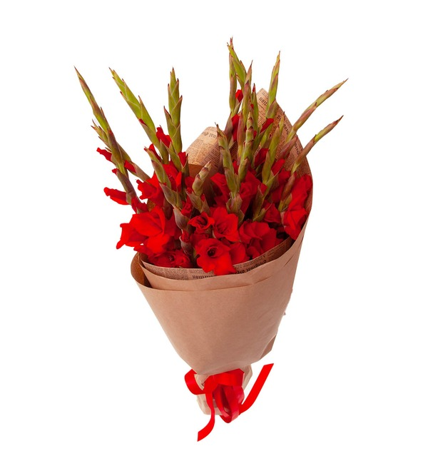 Bouquet-solo of red gladioli (5,7,9,15,25 or 35) – photo #5