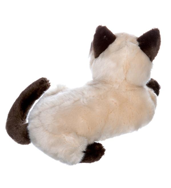 Мягкая игрушка Сиамский кот (25см) – фото № 3