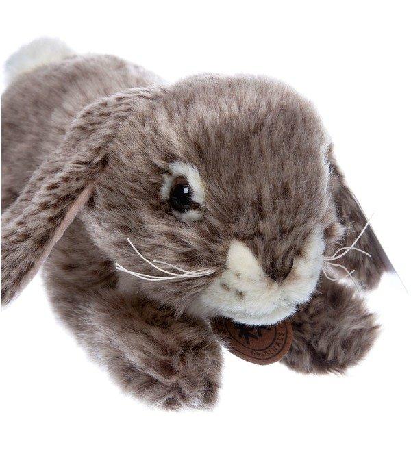 Мягкая игрушка Серый кролик (25 см) – фото № 4