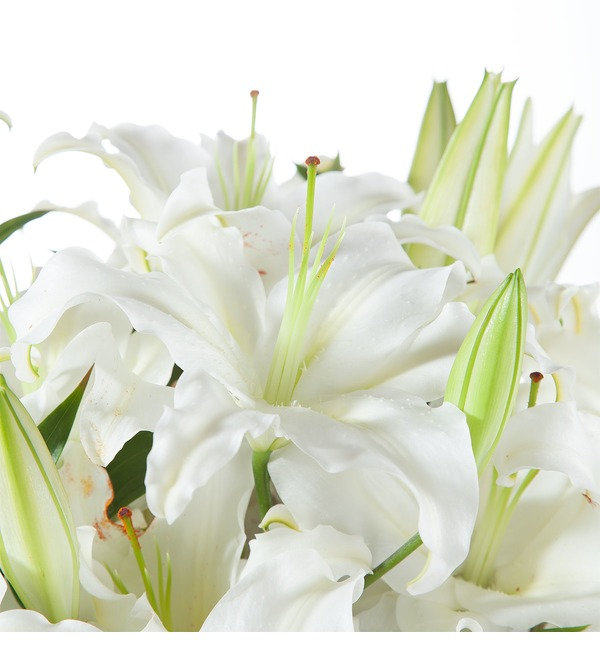 Bouquet of lilies – photo #4