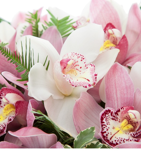 Букет-дуэт Орхидеи Cymbidium – фото № 4