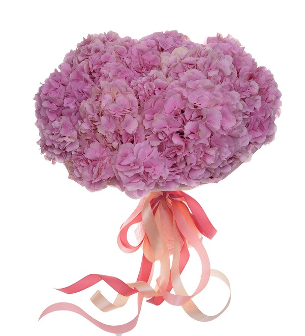 Bouquet-solo of pink hydrangeas (5,7,9,15,25 or 35) – photo #4