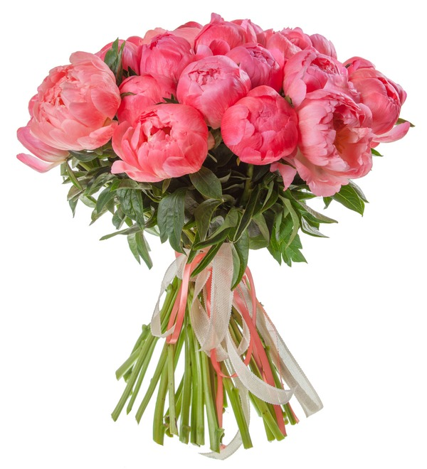 Bouquet-solo of peonies Coral Sunset (15, 29 or 51 peonies) – photo #4