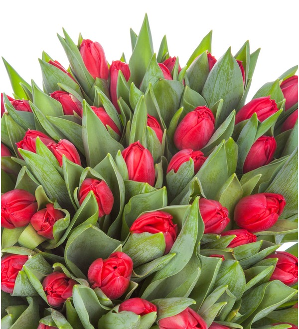 Пионовидные тюльпаны Largo в вазе – фото № 4