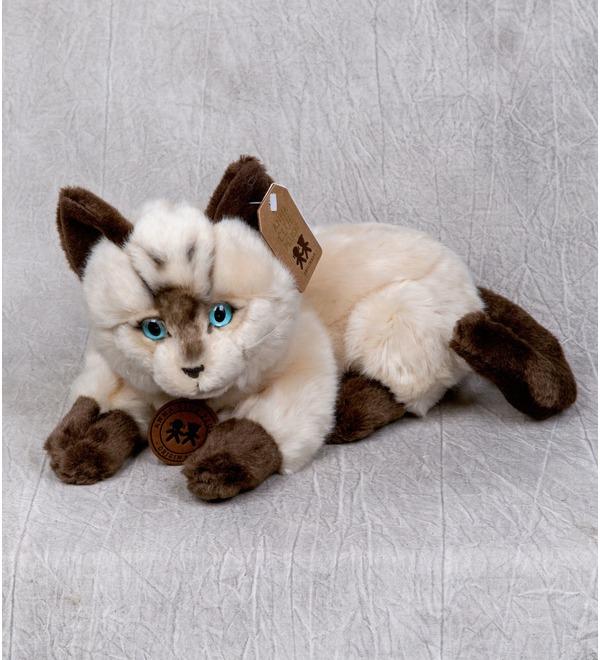 Мягкая игрушка Сиамский кот (25см) – фото № 1