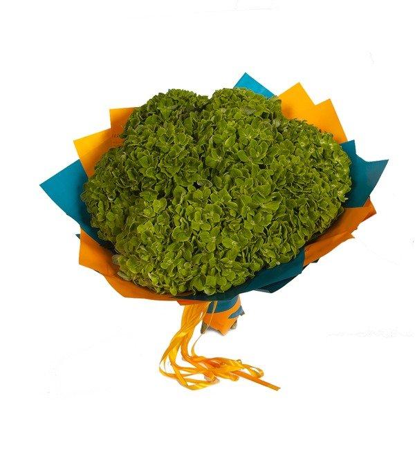Букет-соло Зелёные гортензии (5,7,9 или 15) – фото № 5