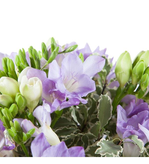 Bouquet of freesias – photo #4