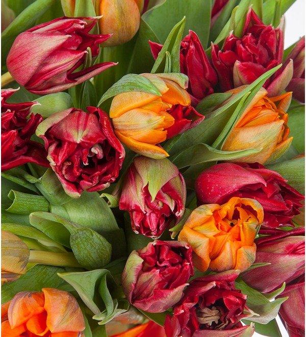 Букет-дуэт тюльпанов Королева (25,35,51,75 или 101) – фото № 2