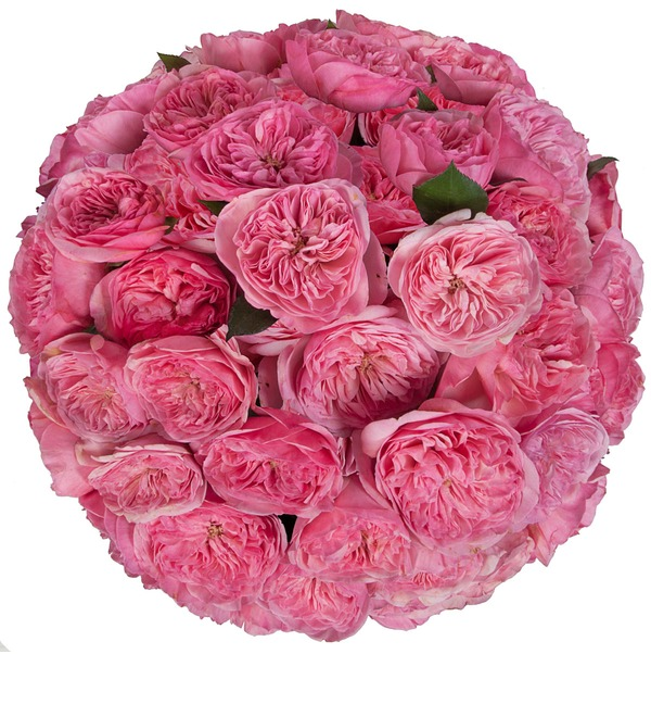 Bouquet of pion-shaped roses Maria Theresia (15, 25 or 51) – photo #5