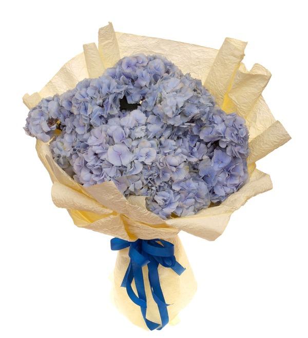 Букет-соло голубых гортензий (5,7,9,15,21 или 25) – фото № 5