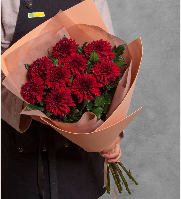 Bouquet of Chrysanthemums Kiss (5, 9 or 15) – photo #1