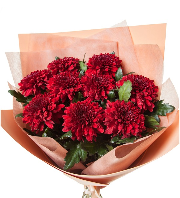 Bouquet of Chrysanthemums Kiss (5, 9 or 15) – photo #3