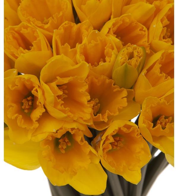 Букет-соло Жёлтые нарциссы (51,75,101 или 151) – фото № 3