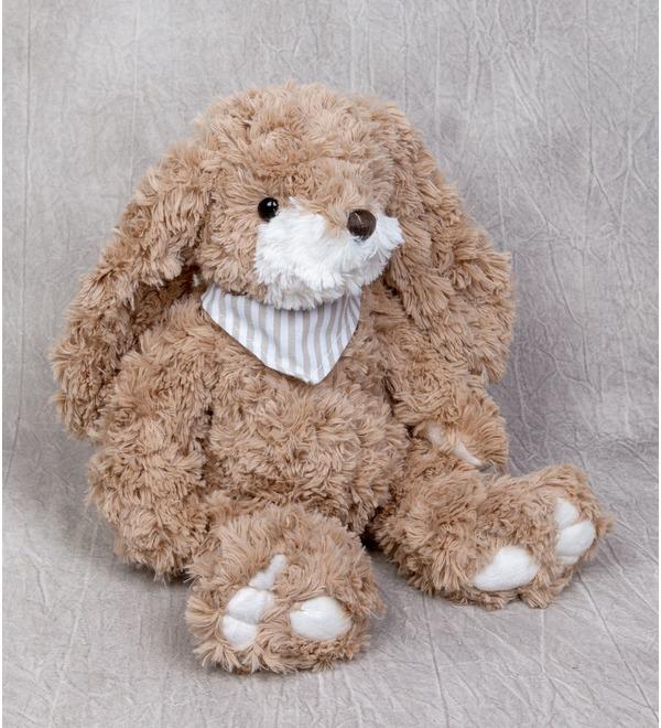 Мягкая игрушка Заяц Габби (23 см) – фото № 1