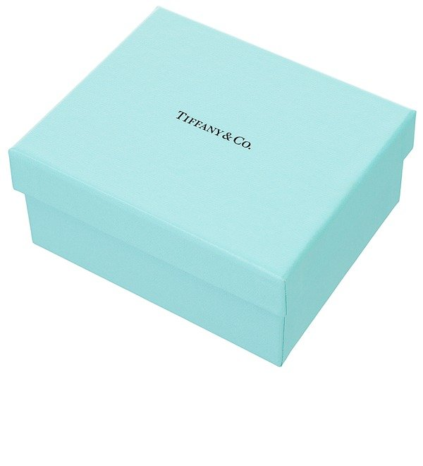 Jewelry case Tiffany – photo #4