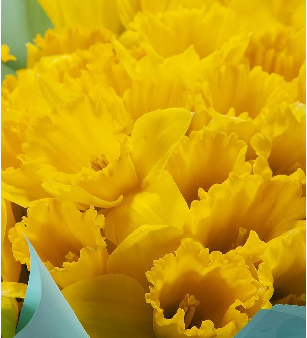 Букет-соло Жёлтые нарциссы (25,51,75 или 101) – фото № 2